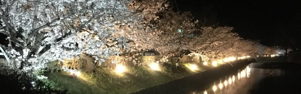 松本デリヘルPrecede(プリシード) はづき(35)のブログカバー画像