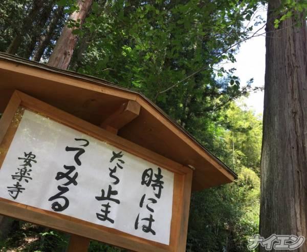松本デリヘルPrecede(プリシード) せりか(45)の6月23日写メブログ「♫時には立ち止まってみる♫」