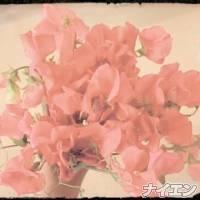 松本デリヘルPrecede(プリシード) ゆいか(48)の10月14日写メブログ「ラストスパート♪」
