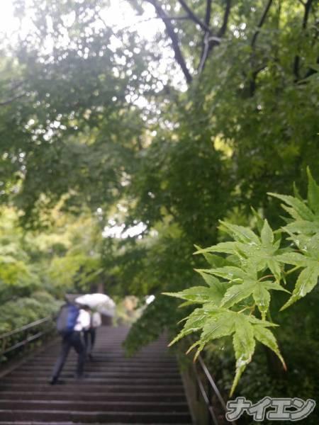 松本デリヘルPrecede(プリシード) さくら(29)の6月26日写メブログ「雨ふらないなぁ」
