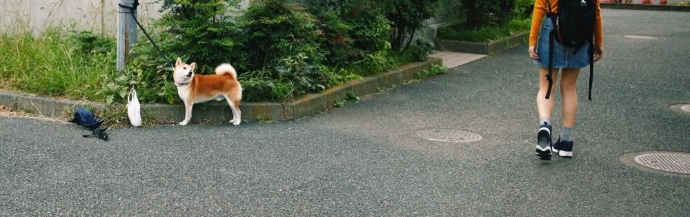 新潟駅前ガールズバー Girls  Bar  LiLiTH かりんの「、、、」