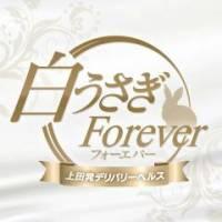 上田デリヘル 上田発・デリバリーヘルス 白うさぎ~Forever~(シロウサギ~フォーエヴァー~)