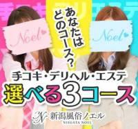 新潟手コキ 新潟風俗Noel-ノエル-(ノエル)