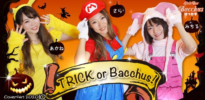 Girls Bar Bacchus新潟駅前店の女の子達