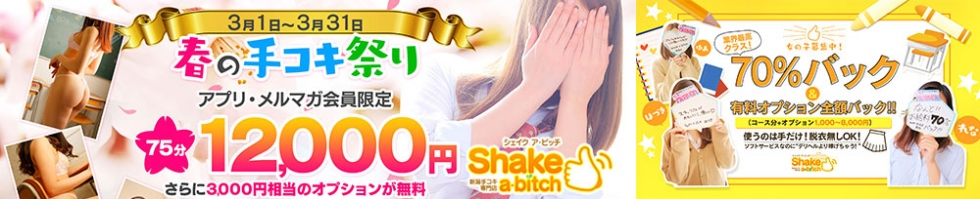 Shake a・bitch〜シェイク ア ビッチ〜(シェイクアビッチ) 新潟市/手コキ