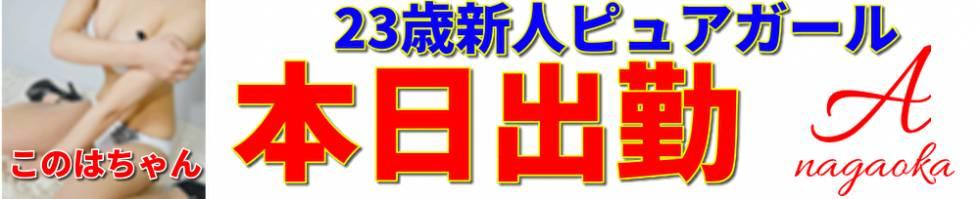 A 長岡店(エース ナガオカテン) 長岡市/デリヘル
