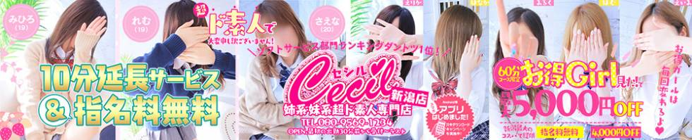CECIL新潟店(セシルニイガタテン) 新潟市/手コキ