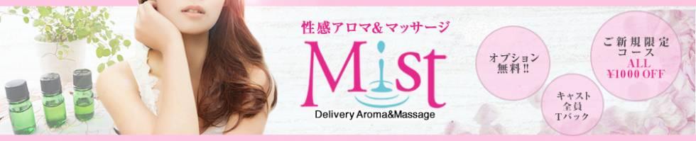 性感アロマ&マッサージ Mist(セイカンアロマアンドマッサージミスト) 三条市/メンズエステ