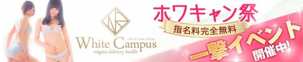 White campus niigata(ホワイトキャンパスニイガタ) 新潟市/デリヘル