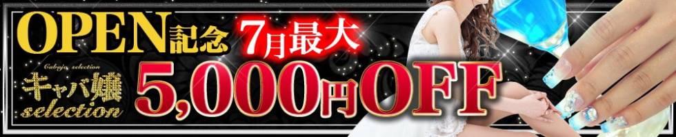 キャバ嬢セレクション(キャバジョウセレクション) 長岡市/手コキ