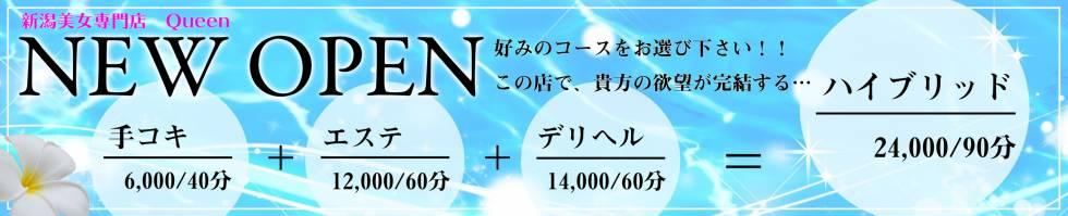 新潟美女専門店Queen(ニイガタビジョセンモンテンクイーン) 新潟市/手コキ
