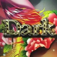 古町居酒屋・バーBAR Dark(バーダーク)