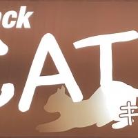 権堂スナックsnack CAT'S(スナックキャッツ)
