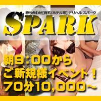 長岡デリヘル Spark(スパーク)のナイトナビ割引