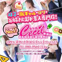 新潟手コキ CECIL新潟店