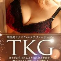 新潟手コキ TKG(ティーケージー)のナイトナビ割引