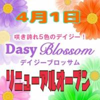 新潟デリヘルDaisy blossom (デイジー ブロッサム)