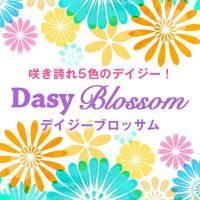 新潟デリヘル Daisy blossom (デイジー ブロッサム)のナイトナビ割引