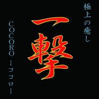 長岡メンズエステCOCORO -ココロ-(こころ)