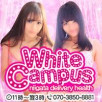新潟デリヘル White campus niigata(ホワイトキャンパスニイガタ)