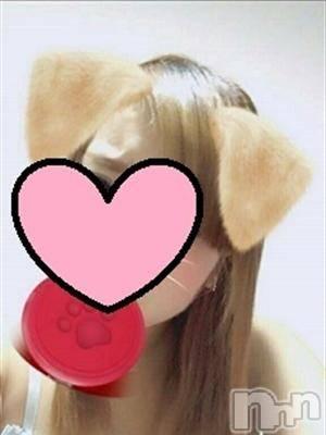 あい☆愛(20) 身長154cm、スリーサイズB86(D).W59.H82。 上田発・デリバリーヘルス 白うさぎ~Forever~在籍。