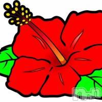 長岡人妻デリヘル 人妻フェニックス(ヒトヅマフェニックス)の2月7日お店速報「キュイーン!キュイキュイキュイーーーーン!!」