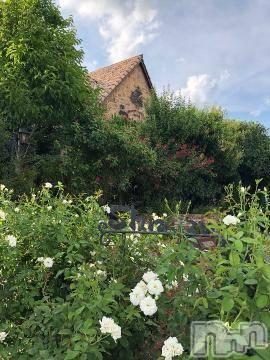 松本デリヘルPrecede(プリシード) ひかり(43)の8月10日写メブログ「おはようございます」