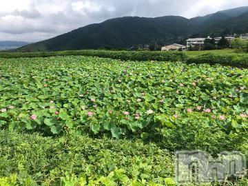 松本デリヘルPrecede(プリシード) ひかり(43)の8月26日写メブログ「おはようございます」
