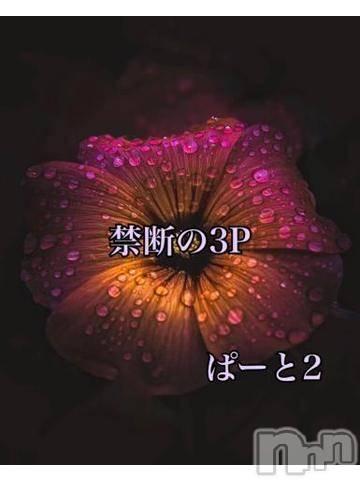 松本デリヘルPrecede(プリシード) ひかり(43)の12月7日写メブログ「タイトルの通り、、、」