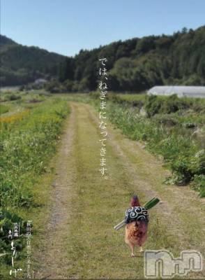 上越人妻デリヘル 愛妻(ラブツマ) 相川あみ★癒し女神(33)の4月19日写メブログ「なんとも言えない気持ち」