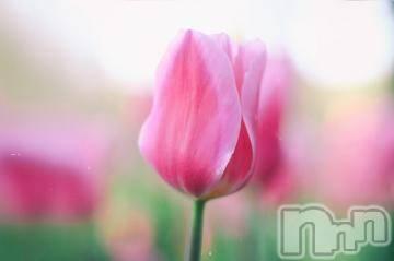 松本メンズエステ ごらく松本(ゴラクマツモト) ☆寿美☆すみれ(27)の4月24日写メブログ「4/23 プリプリ307のお兄さま」