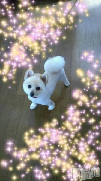 新潟東区リラクゼーションallure(アリュール) の2018年9月16日写メブログ「さきほどは♡」