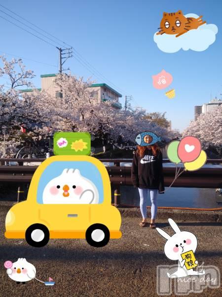 殿町キャバクラELECT(エレクト) の2019年4月17日写メブログ「サクラばんざーい」