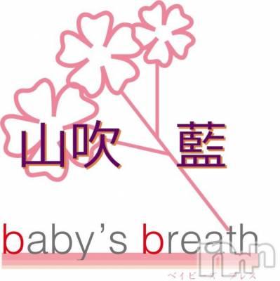 山吹 藍(ヒミツ) 身長ヒミツ。新潟駅前メンズエステ baby's breath(ベイビーズ ブレス)在籍。