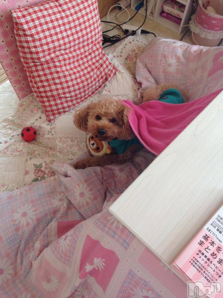 伊那デリヘルよくばりFlavor(ヨクバリフレーバー) ☆マリ☆(24)の1月16日写メブログ「先程は21のRくん♡♡」