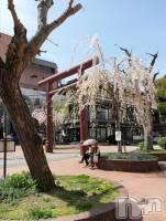 権堂ガールズバーthe BAR XXI(エックスエックスアイ) りりな(19)の4月23日写メブログ「桜満開」