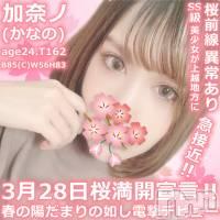 上越デリヘル 密会ゲート(ミッカイゲート)の3月28日お店速報「 『カナノ24歳』格別と言える ルックスは… 他店も羨む 反則レベル!」