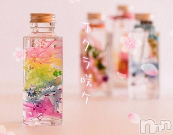 伊那キャバクラAzur Cafe(アジュールカフェ) かなの3月12日写メブログ「春が1番好きだけど...」