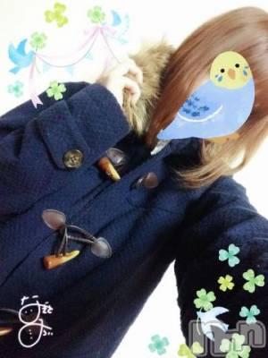 長野デリヘル OLプロダクション(オーエルプロダクション) 渚 みらい(20)の11月14日写メブログ「ぽかぽか素敵!」