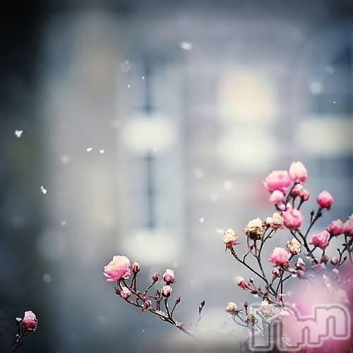 新潟人妻デリヘル人妻楼 新潟店(ヒトヅマロウ ニイガタテン) 彩和(43)の2月8日写メブログ「すみません!結局乗れませんでした(><)」