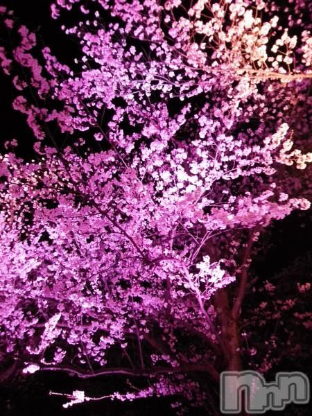 新潟・新発田全域コンパニオンクラブコンパニオンクラブ ライズ さやかの4月13日写メブログ「観桜会」