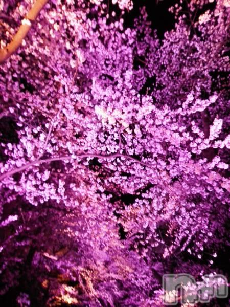 新潟・新発田全域コンパニオンクラブコンパニオンクラブ ライズ さやかの4月14日写メブログ「花より」