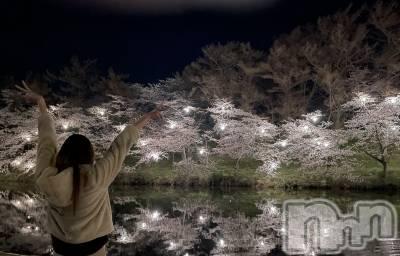 高田クラブ・ラウンジRagdoll (ラグドール) せら(23)の4月1日写メブログ「わーい🌸」