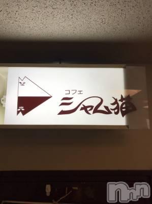 古町スナック シャム猫(シャムネコ)の店舗イメージ枚目