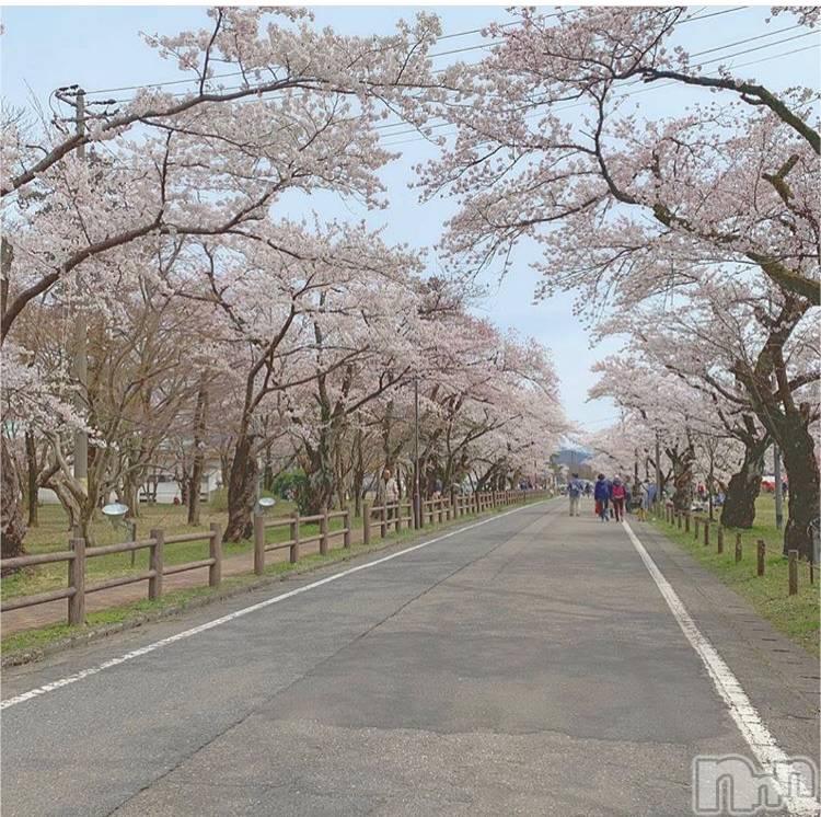 新潟デリヘルTOP(トップ) 新人 せりな(20)の4月15日写メブログ「お花見」