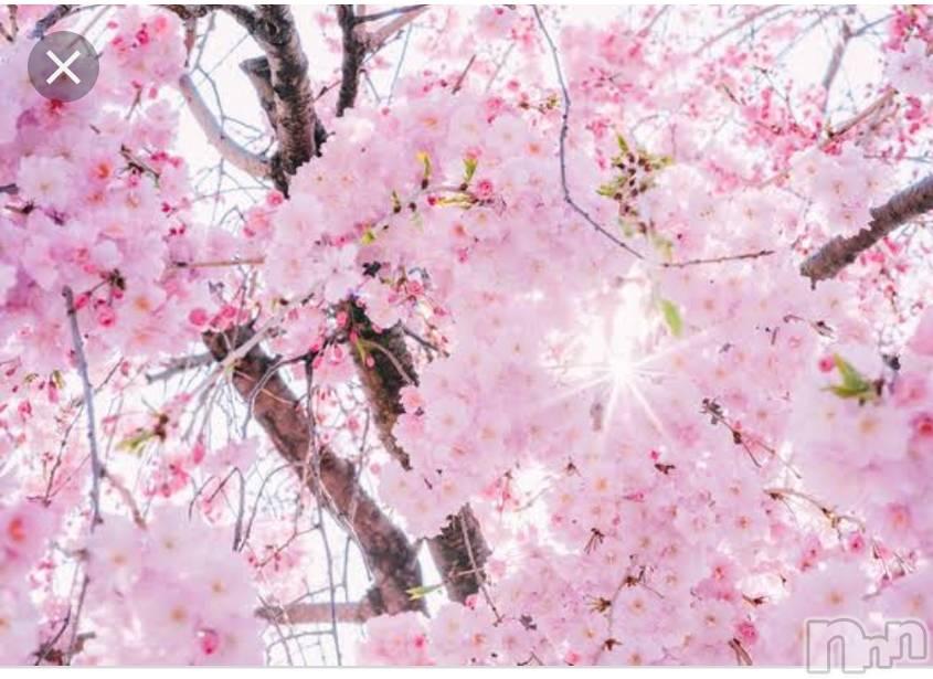 新潟メンズエステAromaVenus(アロマヴィーナス) 【新人】舞衣(45)の4月16日写メブログ「明日」