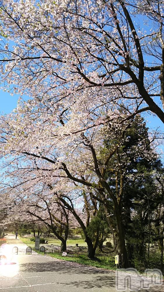 新潟メンズエステAromaVenus(アロマヴィーナス) 【新人】舞衣(45)の4月20日写メブログ「気持ち良かった」
