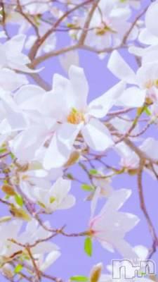 新潟人妻デリヘル 五十路マダム新潟店(カサブランカグループ)(イソジマダムニイガタテン) 北島あや(55)の4月10日写メブログ「お久しぶりです?」