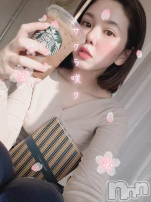 高田クラブ・ラウンジRagdoll (ラグドール) まり(24)の4月2日写メブログ「混んでる」