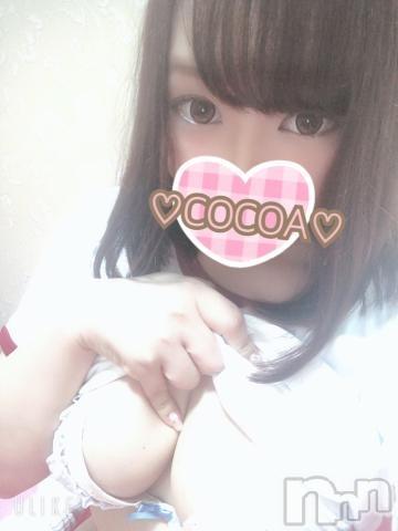 新潟ソープ本陣(ホンジン) ここあ(23)の2019年11月10日写メブログ「こんばんちぃ~!!」